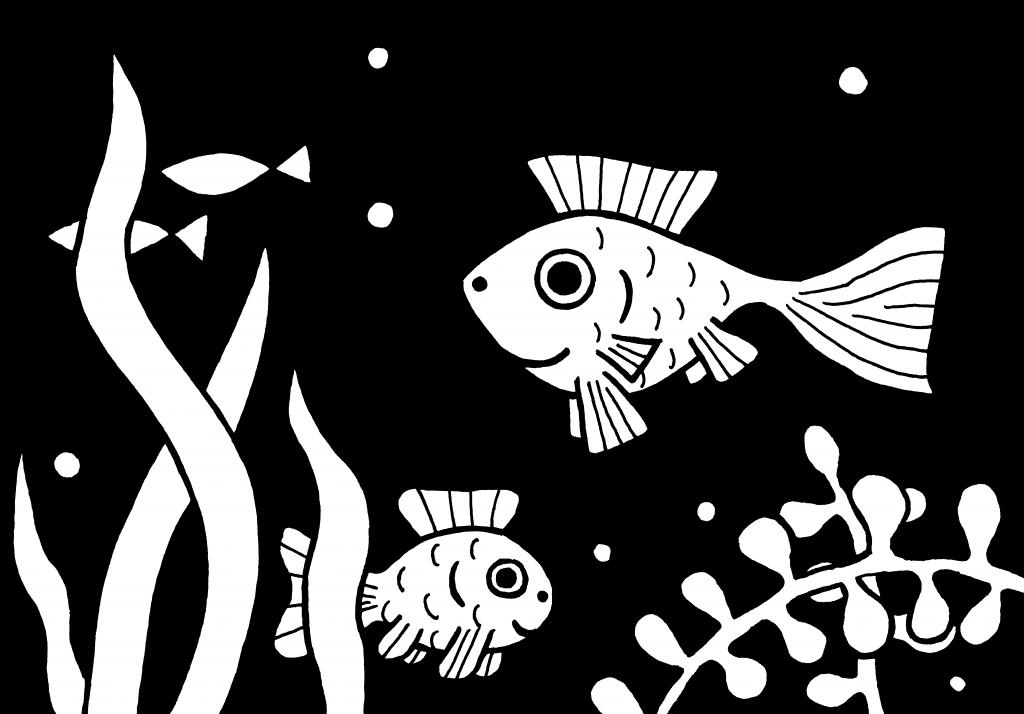 akvarium_eto_interesno