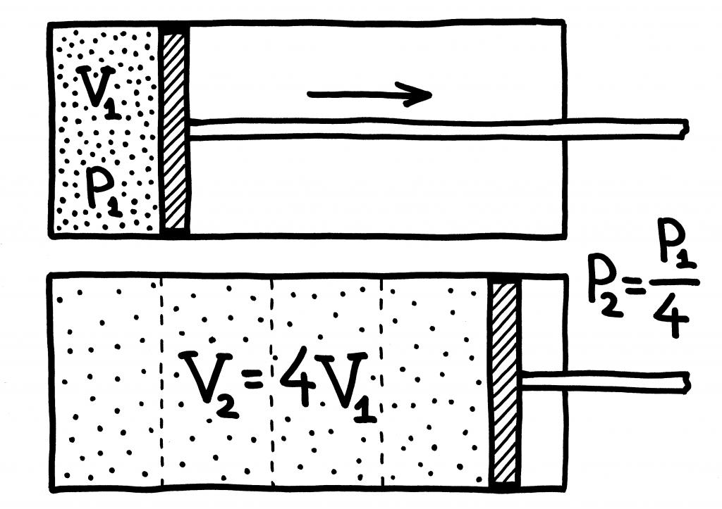 proporc3