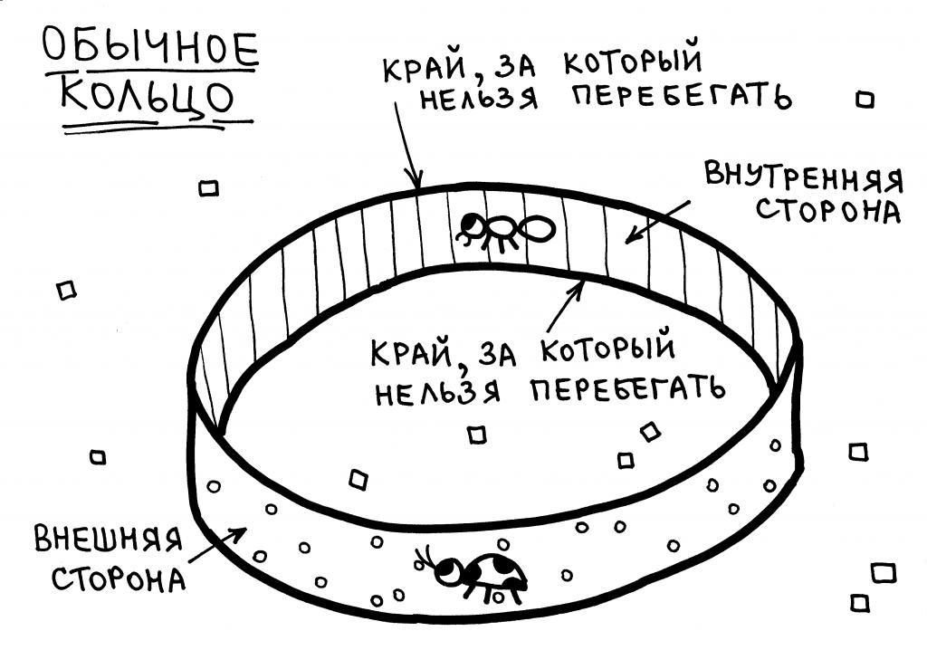 lenta-mebiusa-3