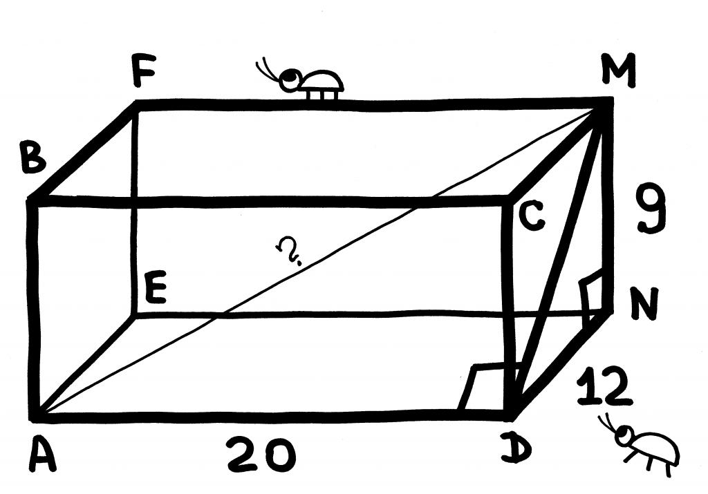 teorema-pifagora-24